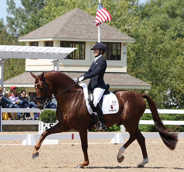 Lisa Wilcox and Gallant Reflection HU. © 2015 Ken Braddick/dressage-news.com