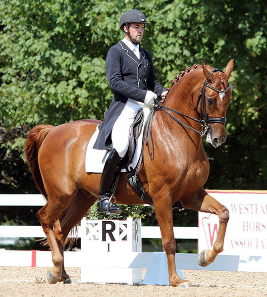 Marcus Orlob and Equestricons Et Voila, USA Developing Grand Prix Champion. © 2015 Ken Braddick/dressage-news.com