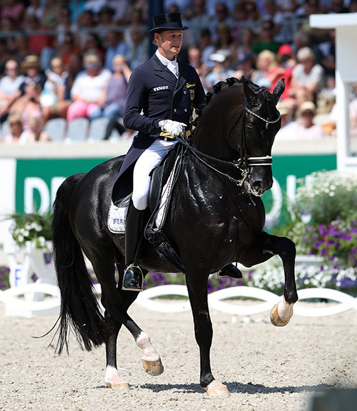 With the prospect of making Germany's team for the World Equestrian Games that would have been the first world championships after missing out on the Olympics two years earlier, Matthias Alexander Rath and Totilas rode at Aachen in the Grand Prix and the Special... to drop out of the Freestyle with another injury. © 2014 Ken Braddick/dressage-news.com