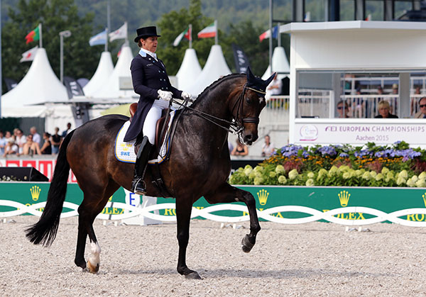 Tinne Vilhelmsson-Silfvén on Don Auriello that led the Swedish team at the European Championships to earn qualification for the  Olympic Games in 2016. © 2015 Ken Braddick/dressage-news.com