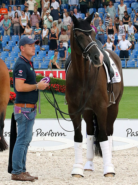 Valegro, seen here with his groom. Alan Davies, never fails to amaze with his inquisitive personality. What's going on there? he seems to ask, as rider Charlotte Dujardin receive a silver medal as one of the British team combinations--and the highest scoring individual pair as, no dount, Valegro would expect. © 2015 Ken Braddick/dressage-news.com