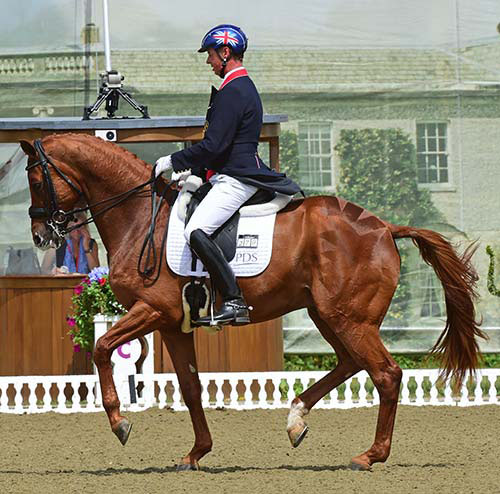 Carl Hester on Wanadoo. Courtesy of Carl Hester