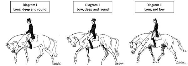 Microsoft Word - Dressage Updated.doc