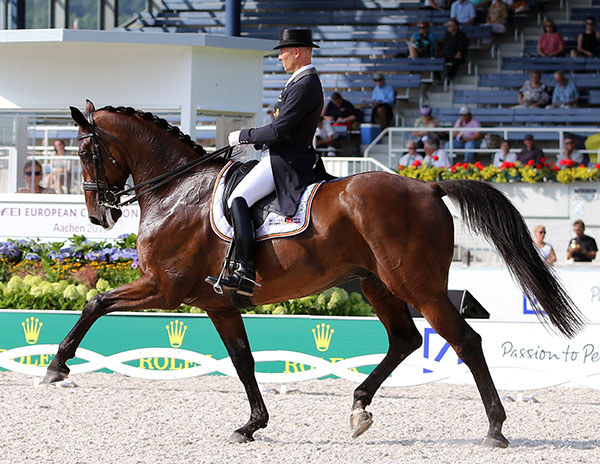 Jeroen Devroe -and Eres DL. © 2015 Ken Braddick/dressage-news.com
