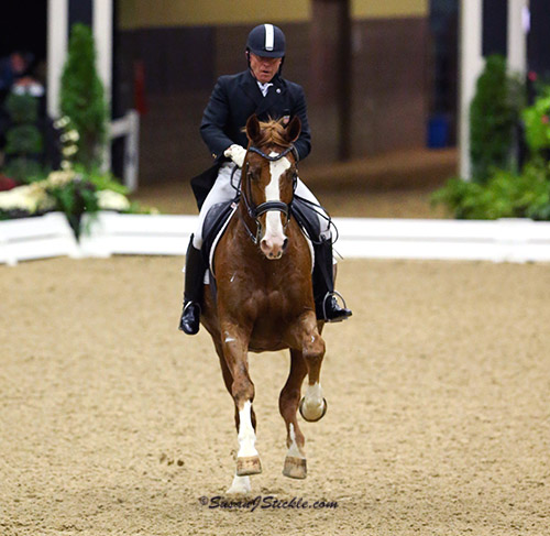Michael Poulin riding Thor M in the US Dressage Finals. © 2015 SusanJStickle.com