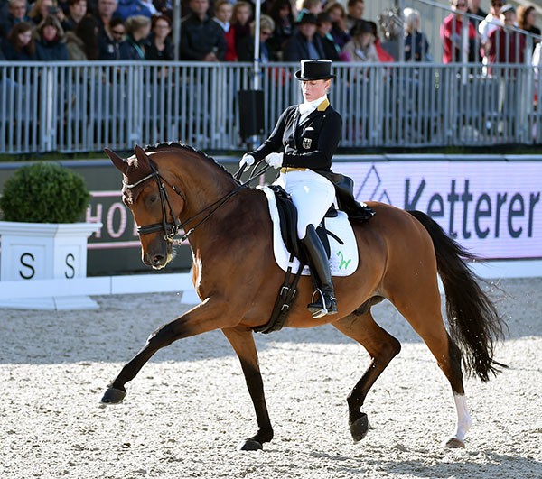 Isabell Werth on Emilio competing at the Peterhof Dressage Gala in 2015. © 2015 Tanja Becker