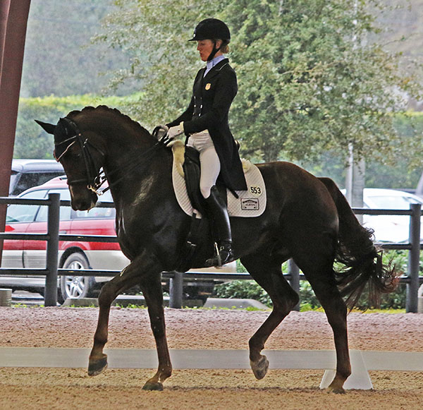 "Arlene ""Tuny"" Page and Woodstock in the World Cup Grand rix. © 2016 Ken Braddick/dressage-news.com"