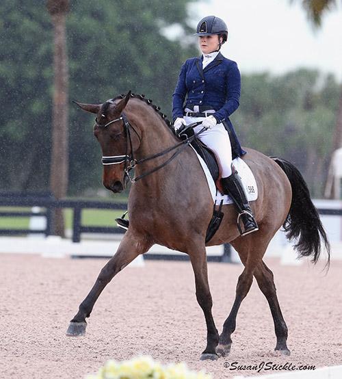 """Barbara """"Bebe"""" Davis riding Equestricons Carrera . © 2016 SusanJStickle.com"""