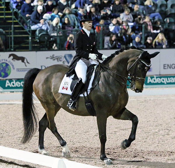 Belinda Trussell riding Anton to victory in the Adequan Global Dressage Festival World Cup Freestu;e. © 2016 Ken Braddick/dressage-news.com