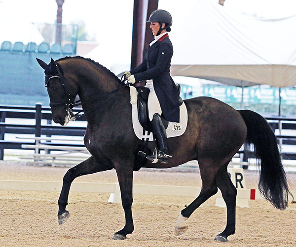 Kasey Perry-Glass on Dublet in their CDI Grand Prix debut at the Adequan Global Dressage Festival. © 2016 Ken Braddick/dressage-news.com