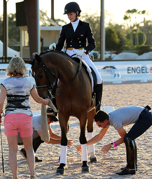 Leah Wilson Wilkins on Fabian with trainers David Marcus (left) and Nicholas Fyffe placing on wraps n preparation for the World Cup Grand Prix Special awards ceremony. © 2016 Ken Braddick/dressage-news.com