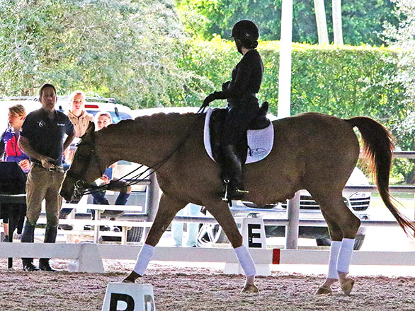 Robert Dover teaching at the Horsemastership Clinic.  2015 Ken Braddick/dressage-news.com
