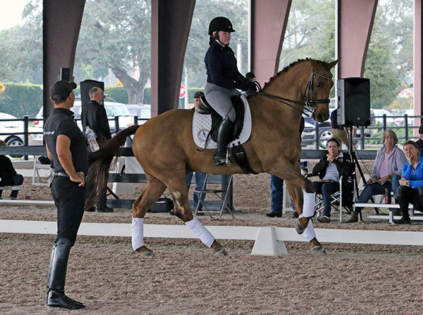 Steffen Peters flew in from California to join the lineup of trainers at the Robert Dover HoseMastership Week for youth riders from across the United States. © 2015 Ken Braddick/dressage-news.com