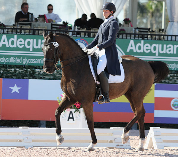 Anna Marek on Unico G competing at the Adequan Global Dressage Festival. © 2016 Ken Braddick/dressage-news.com