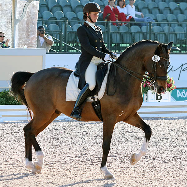 Beatrice Marienau and Stefano B competing in the Adequan Global Dressage Festival CDI3* Grand Prix Freestyle. © 2016 Ken Braddick/dressage-news.com