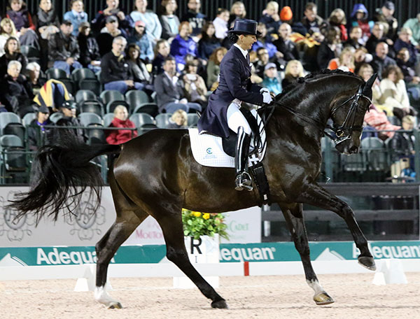 Mikala Gundersen and My Lady inthe Adequan Global Dressage Festival Freestyle that was puntuated by loud squwarks from an electrical fault but did not appear to affect the pair. © 2016 Ken Braddick/dressage-news.com