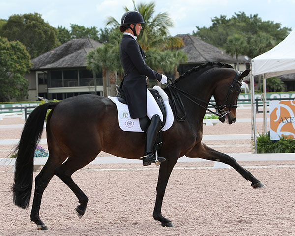 Adrienne Lyle competing Horizon at Adequan Global Dressage Festival national show. © 2016 Ken Braddick/dressage-news.com