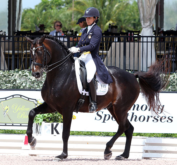 Allison Brock and Rosevelt. © 2016 Ken Braddick/dressage-news.com