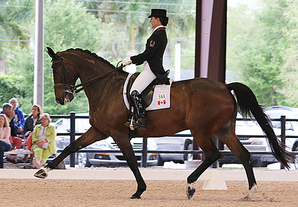 Belinda Trussell and Anton as the top finishing pair for Canada in the CDIO3* Nations Cup. © 2016 Ken Braddick/dressage-news.com