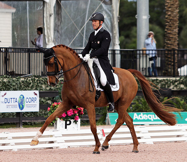 Günter Seidel and Zero Gravity. File photo. Ken Braddick/dressage-news.com