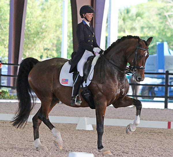 Laura Graves on Verdades ceenting the United State victory in the Wellington CDIO3* Nations Cup. © Ken Braddick/dressage-news.com