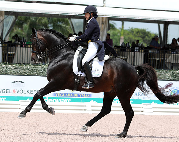 Allison Brock and Rosevelt in the Adequan Global Dressage Festival CDI3* Grand Prix Special. © 2016 Ken Bradick/dressage-news.com