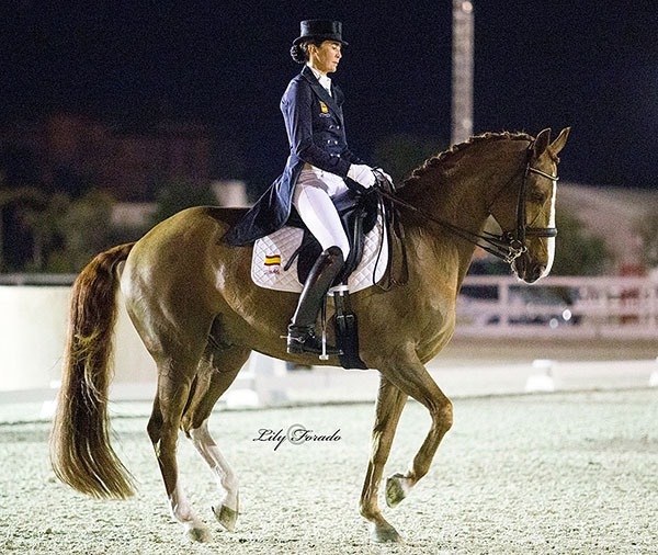 Beatriz Ferrer-Salat and Delgado at Oliva Nova CDI3*. © 2016 Lily Forado for dressage-news.com