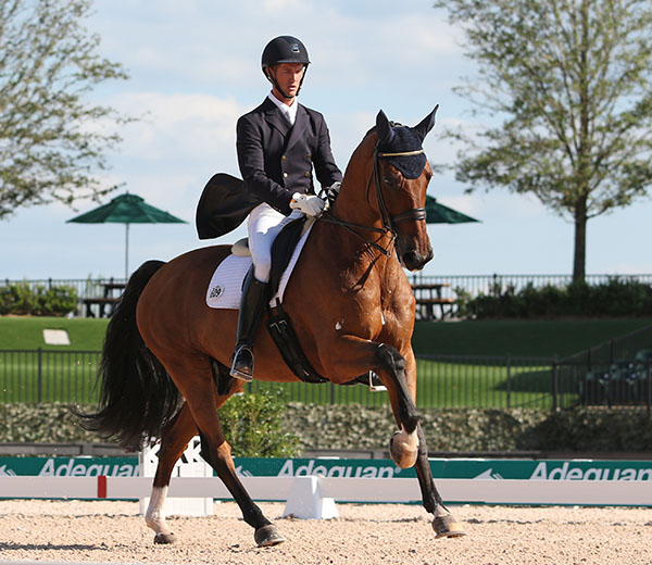 Chris von Martels on Divertimento in Tryon CDI3* Grand Prix Special. © 2016 Ken Braddick/dressage-news.com