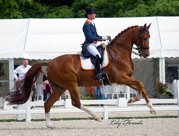 Former world No. pair Adelinde Cornelissen and Jerich Parzival, now 19 years old, performing in the Nations Cup. © 2016 Lily Forado for dressage-news.com