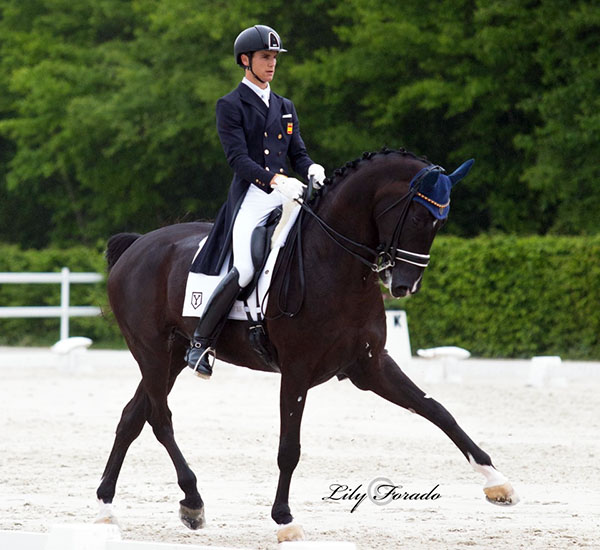 Juan Matute, Jr. competing at Compiègne. © 2016 Lilty Forado for dressage-news.com