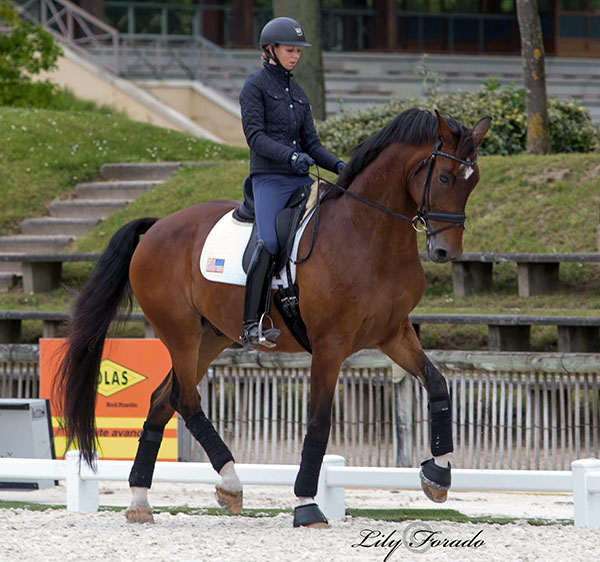 Laura Graves and Verdades at Compiègne. © 2016 Lily Forado for dressage-news.com