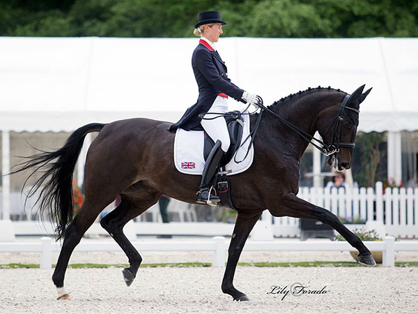Great Britain's Laura Tomlinson on Rosalie B posted a personal best Grand Prix score in the Nations Cup. © 2016 Lily Forado for dressage-news.com