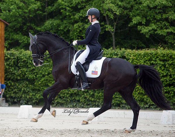 Lauren Asher on De Noir competing at Compiègne. © 2016 Lily Forado for dressage-news.com