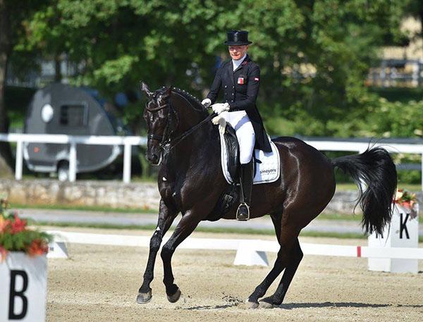 Marcela Krinke Susmelj riding Smeyers  Sopran in the horse's Big Tour  debut. © 2016 Sibil Slejko/Kobilarna Lipica - Lipica Stud Farm