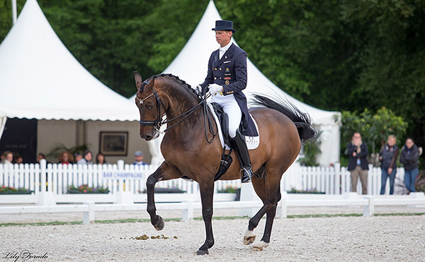 Sweden's two-time Olympian Patrik Kittel placed second on Delaunay, a 10-year-old Oldenburg gelding, in the Compiègne CDI3* Grand Prix. © 2016 Lily Forado for dressage-news.com