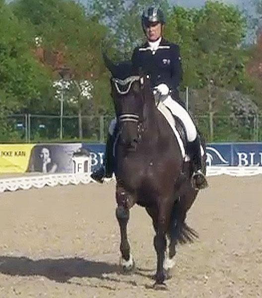 Suzanne Hearn and Remmington in Odense CDI3* Grand Prix.