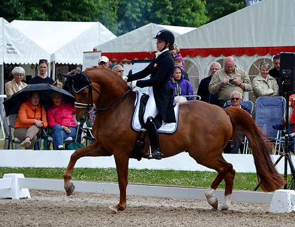 Cathrine Dufour on Cassidy at the Danish Championships. Photo courtesy Danish federation