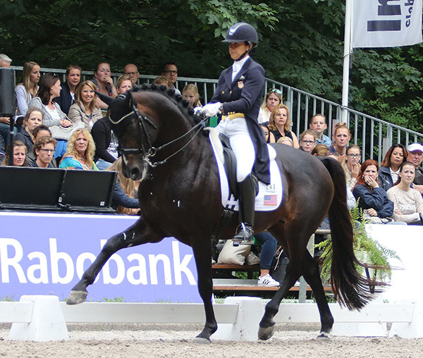 Allison Brock and Rosevelt in the CDI3* Grand Prix Special at Rotterdam. © 2016 Ken Braddick/dressage-news.com