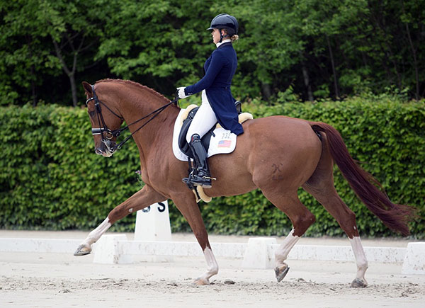 "Barbara ""Bebe"" Davis on Feivel Mouskewitz competing at Compiègne, France last month. 2016 Lily Forado for dressage-news.com"