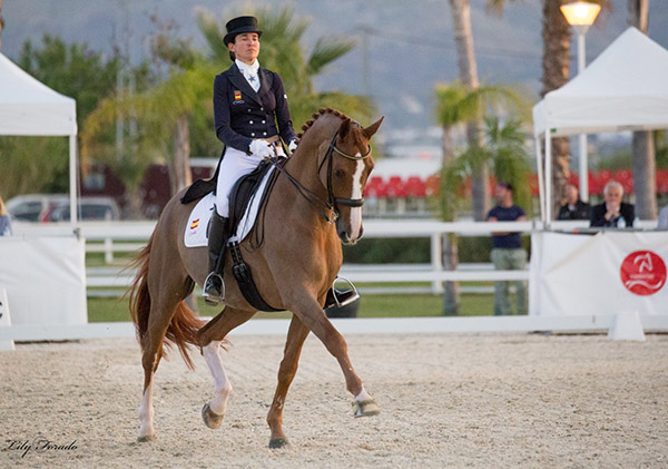 Beatriz Ferrer-Salat and Delgado, Spanish Chamions. © 2016 Lily Forado for dressage-news.com