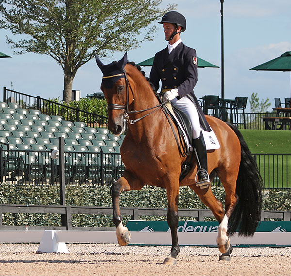 Chris von Martels and Divetimento. © 2016 Ken Braddick/dressage-news.com