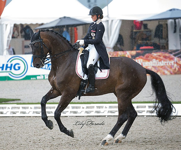 Diana Porsche on Di Sandro placed fourth in the European Championships Under-25 Individual Grand Prix. © 2016 Lily Forado for dressage-news.com