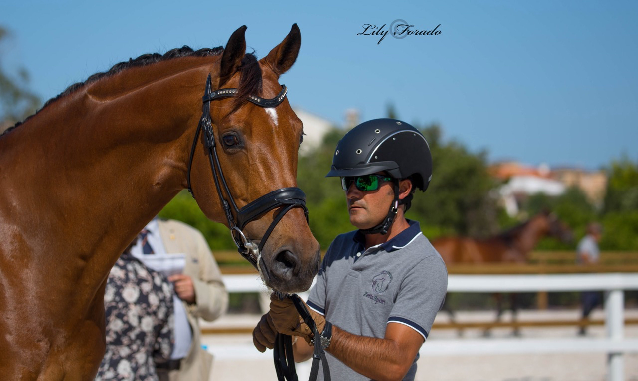 Jose Antonio Garcia Mena and Sir Schiwago. © 2016 Lily Forado for dressage-news.com