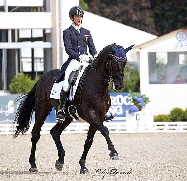 Juan Matute, Jr. riding Don Diego Ymas at the European Under-25 Championships. © Lily Forado. © 2016 Lily Forado for dressage-news.com