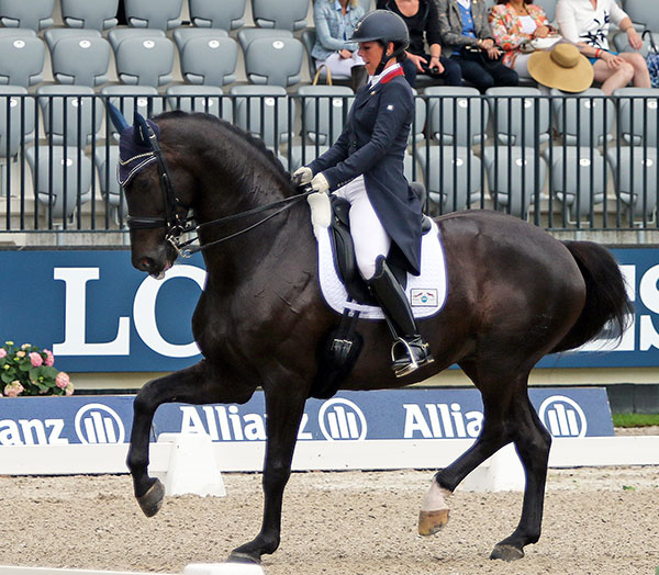 Kasey Perry-Glass riding Dublet in the CDIO5* Nations Cup at Rotterdam. © 2016 Ken Braddick/dressage-news.com