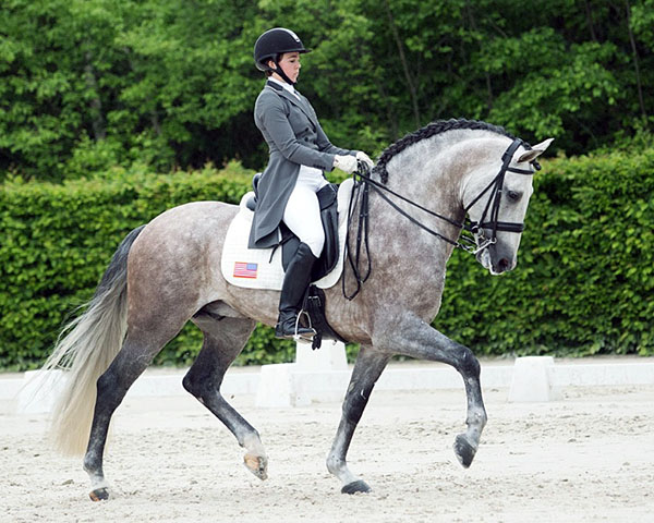 Kerrigan Gluch on Vaquero HGF the top scoring American team combination. © 2016 Lily Forado for dressage-news.com