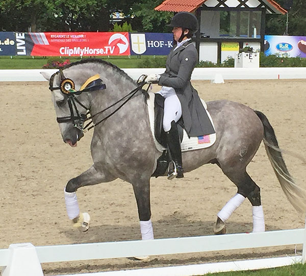 Kerrigan Gluch on Vaquero HGF in the honor round at the Hagen, Germany Nations Cup competiton.
