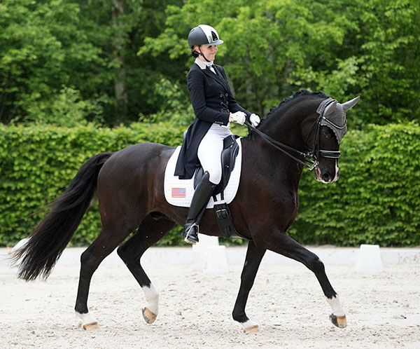 Lauren Asher competing De Noir in Europe. © 2016 Lily Forado for dressage-news.com