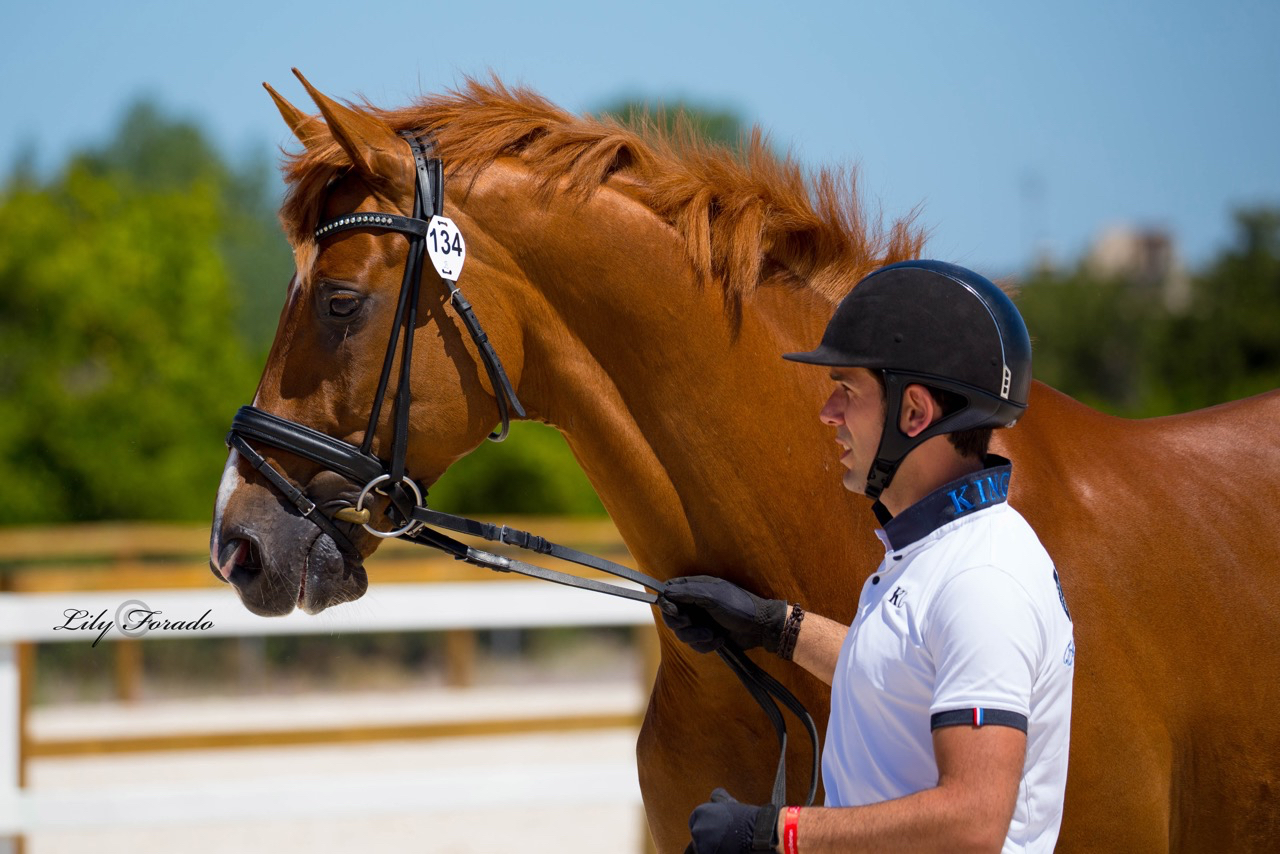 Severo Jurado Lopez with the 10-year-old Lorenzo that has built a spectacular competition record since starting Grand Prix earlier this year. © 2016 Lily Forado for dressage-news.com