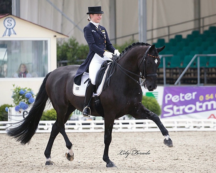 Sanneke Rothenberger and Deveraux OLD enjoying the inaugural European Under-25 Championships. © 2016 Lily Forado for dressage-news.com